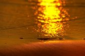 picture of atlantic ocean beach  - sun glint on sand at sunset - JPG