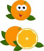 Orange Whole And Slice Of Orange With Orange Leaves. Vector Illustration Of Oranges. Adorable Orange poster
