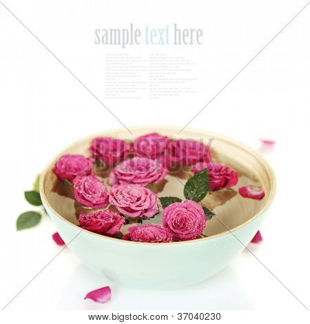 Close up of Beautiful pink roses in bowl over white (with easy removable sample text)
