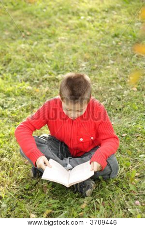 Sitting Boy Reading Book On Grass
