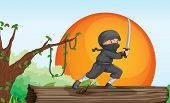 picture of shoplifting  - illustration of a thief in a beautiful nature - JPG