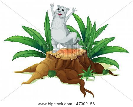 Ilustration of a a gray sealion above the wood on a white background