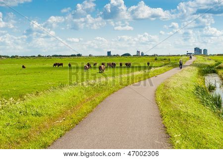 Dutch Landscape With Bicyclists