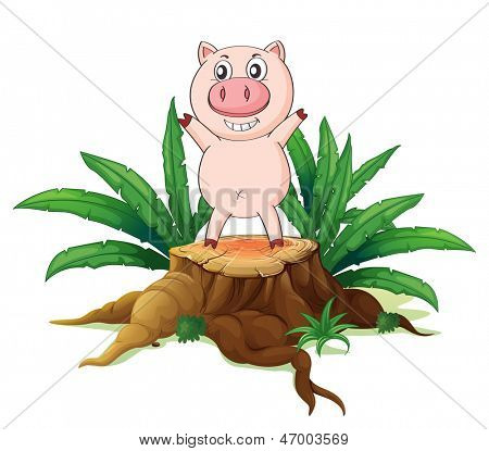 Illustration of a big tree with a pig on a white background