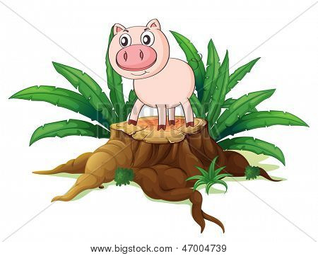 Illustration of a pig above a trunk on a white background