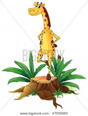 Illsutration of a giraffe standing above a chopped wood on a white background