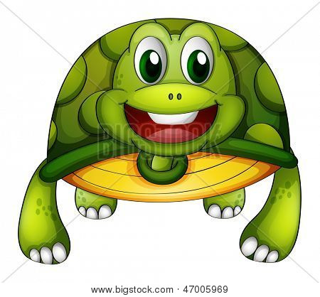 Illustration of a green turtle on a white background
