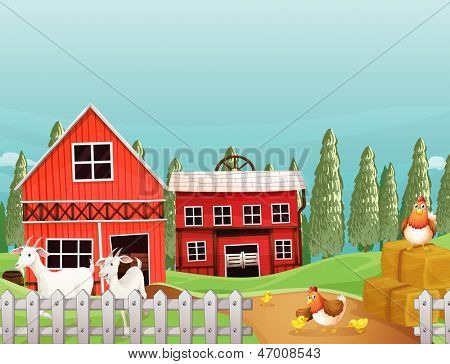 Illustration of a farm with goats and chickens
