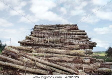 Logs Piled High