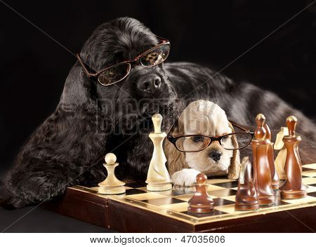 dog with glasses playing chess