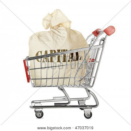 Sack full of money in shopping cart isolated on white background