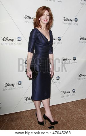 BEVERLY HILLS - JUL 12:  Dana Delany at the Disney ABC Television Group Summer All Star party on July 12, 2008 in Beverly Hills, California.