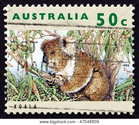 Postage Stamp Australia 1992 Koala, Herbivorous Marsupial