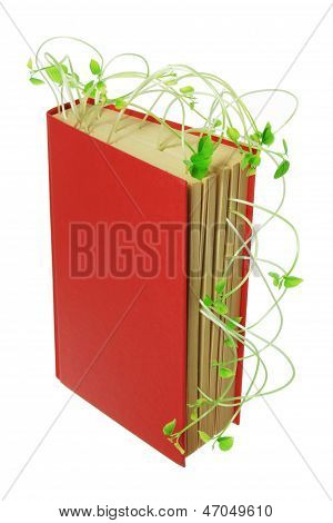 Book And Snow Pea Sprouts