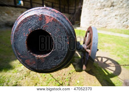 Old Field Cannon