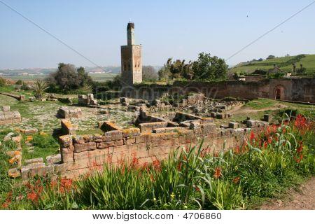 Cellah In Rabat