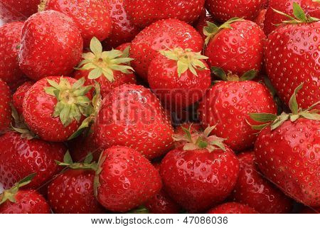 Ripe Strawberries In Bulk