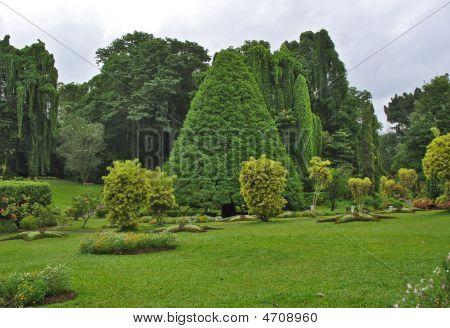 Botanical Garden, Kandy