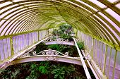 pic of canopy roof  - In the roof space of a greenhouse - JPG