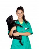 stock photo of pug  - Brunette vet with a pug dog isolated on white background - JPG