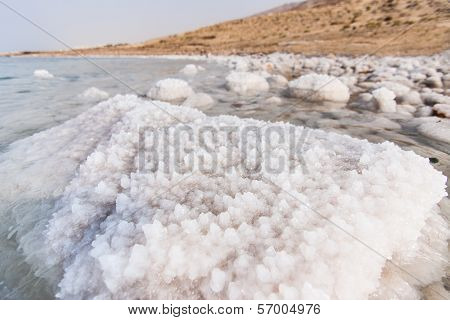 Detail Of Salt On The Dead Sea Shore, Jordan