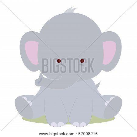 Baby Cute Elephant