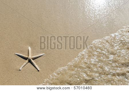 Overhead view of a starfish and wave on a smooth background of sand. Beautiful beach.