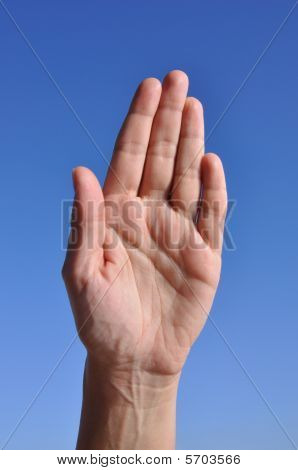 Woman Hand  - Five Fingers Close