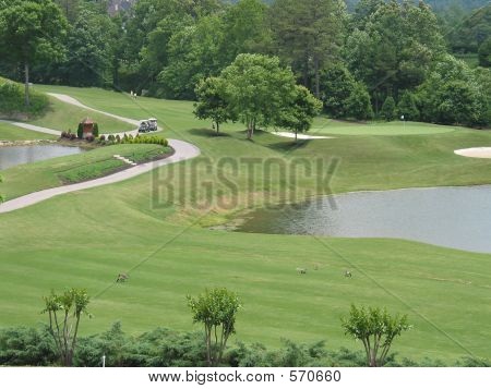 Golf Course With Water Hazard
