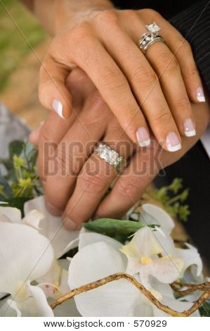 Bride And Groom's Hands