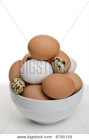Mixed Eggs