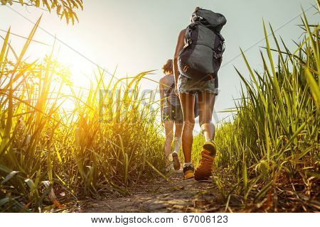 Two hikers walking through green lush meadow