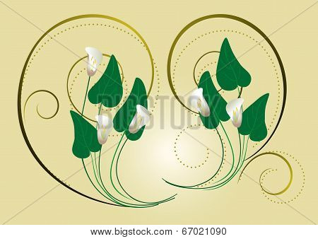 Calla flowers with the decor of spirals on a light background