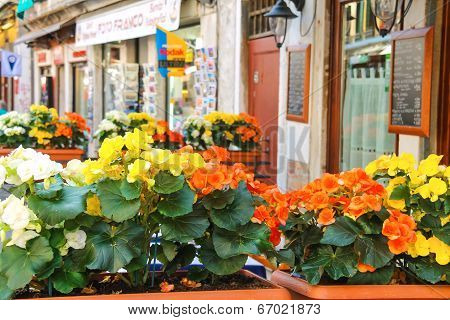 Flowers Decorate The Outdoor Cafe On The Market In Venice, Italy