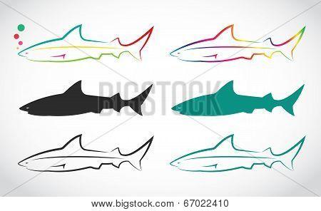 Vector Group Of Shark
