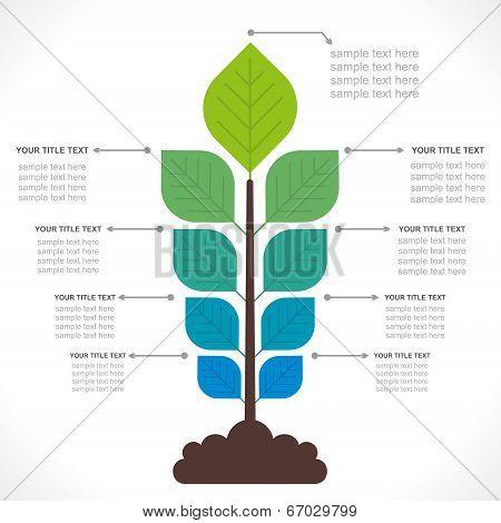 tree creative info-graphics concept vector