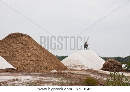 Salt Mine Worker