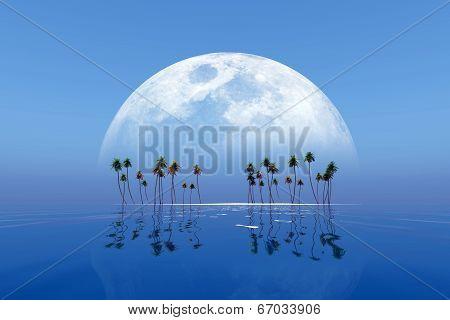 Big Moon Over Island