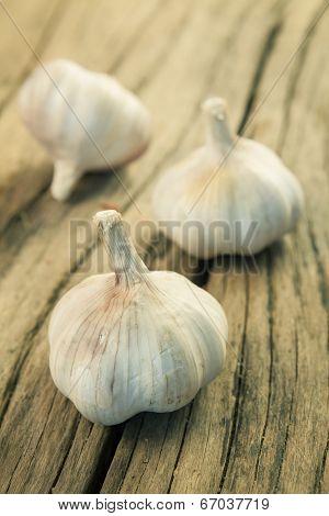 Organic Garlic On Wood