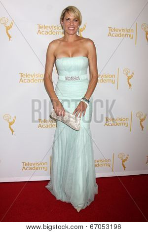 LOS ANGELES - JUN 19:  Arianne Zucker at the ATAS Daytime Emmy Nominees Reception at the London Hotel on June 19, 2014 in West Hollywood, CA