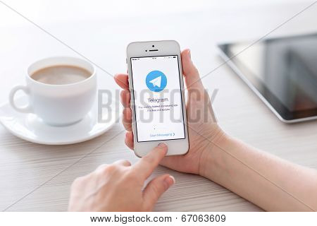 Female Hands Holding White Iphone 5S With App Telegram On The Screen In The Office