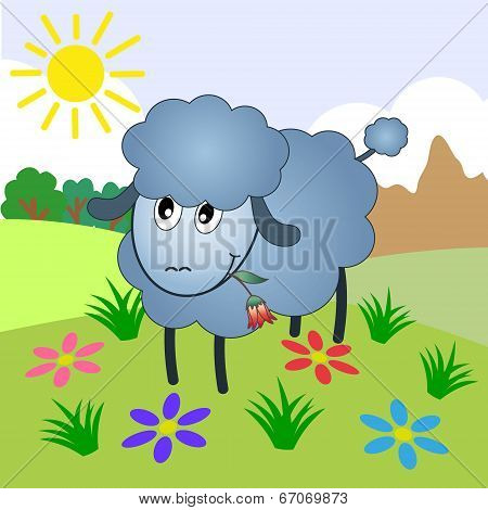 sheep, vector
