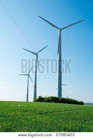 Windwheels, fields and blue sky
