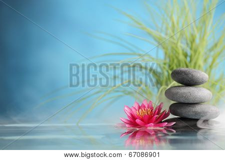 Spa still life with water lily and zen stone in a serenity pool poster