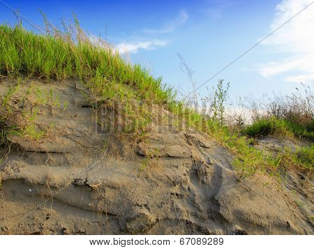 Dunes with Beachgrass