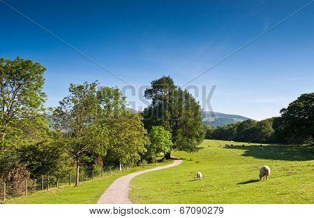Idyllic Rural, Cumbria, Uk