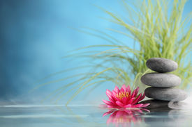 picture of stone-therapy  - Spa still life with water lily and zen stone in a serenity pool - JPG