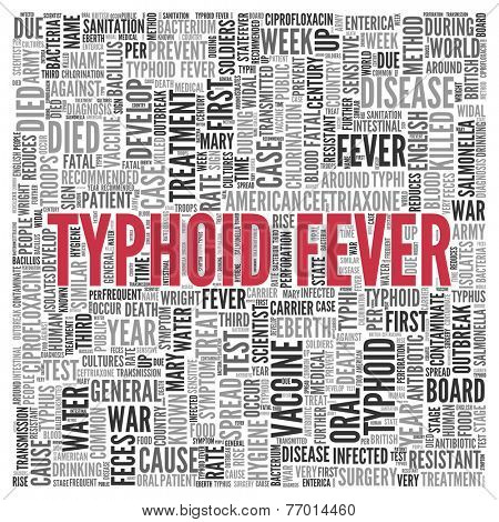 Close up Red TYPHOID FEVER Text at the Center of Word Tag Cloud on White Background.