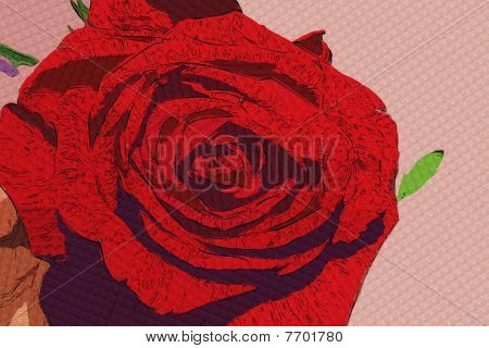 Stock Photo Of Red Rose