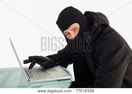 Burglar using laptop while looking at camera on white background
